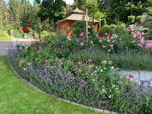 tusen trädgårdar.jpg
