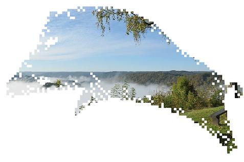 une ardeur d'avance logo, luxembourg logo, chan graphiste, concours luxembourg, illustration sanglier, pixelisation, style qr code