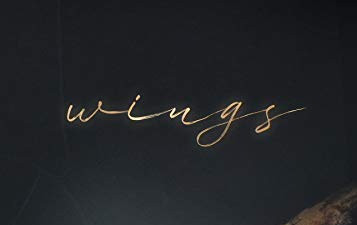 Book Review:  Wings by Nicole Harman