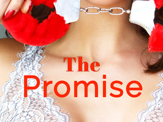 THE PROMISE by @AllysonYoung45 #BDSM #MFM #newrelease