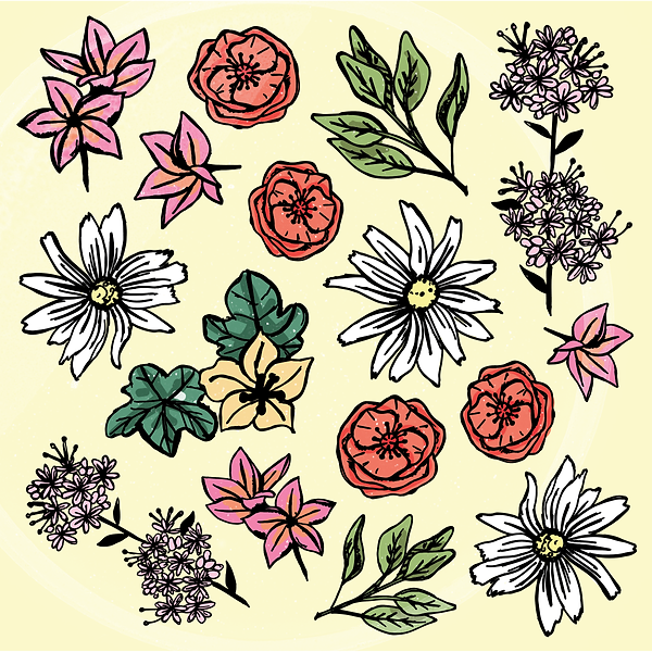 San Diego Florals-01.png