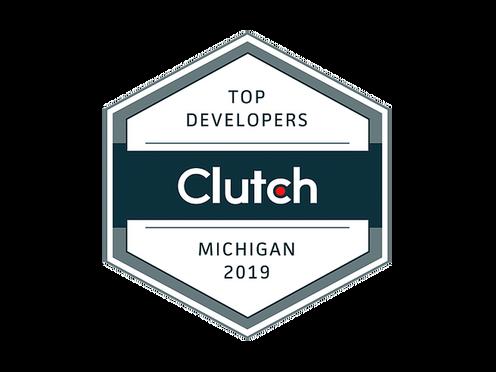Top Developers in Michigan