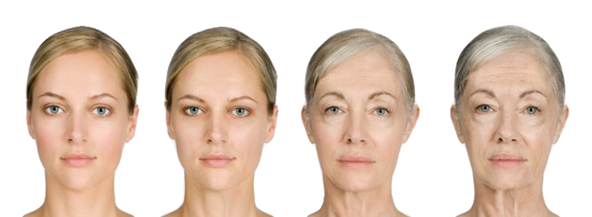 Aging-696x255_edited.png