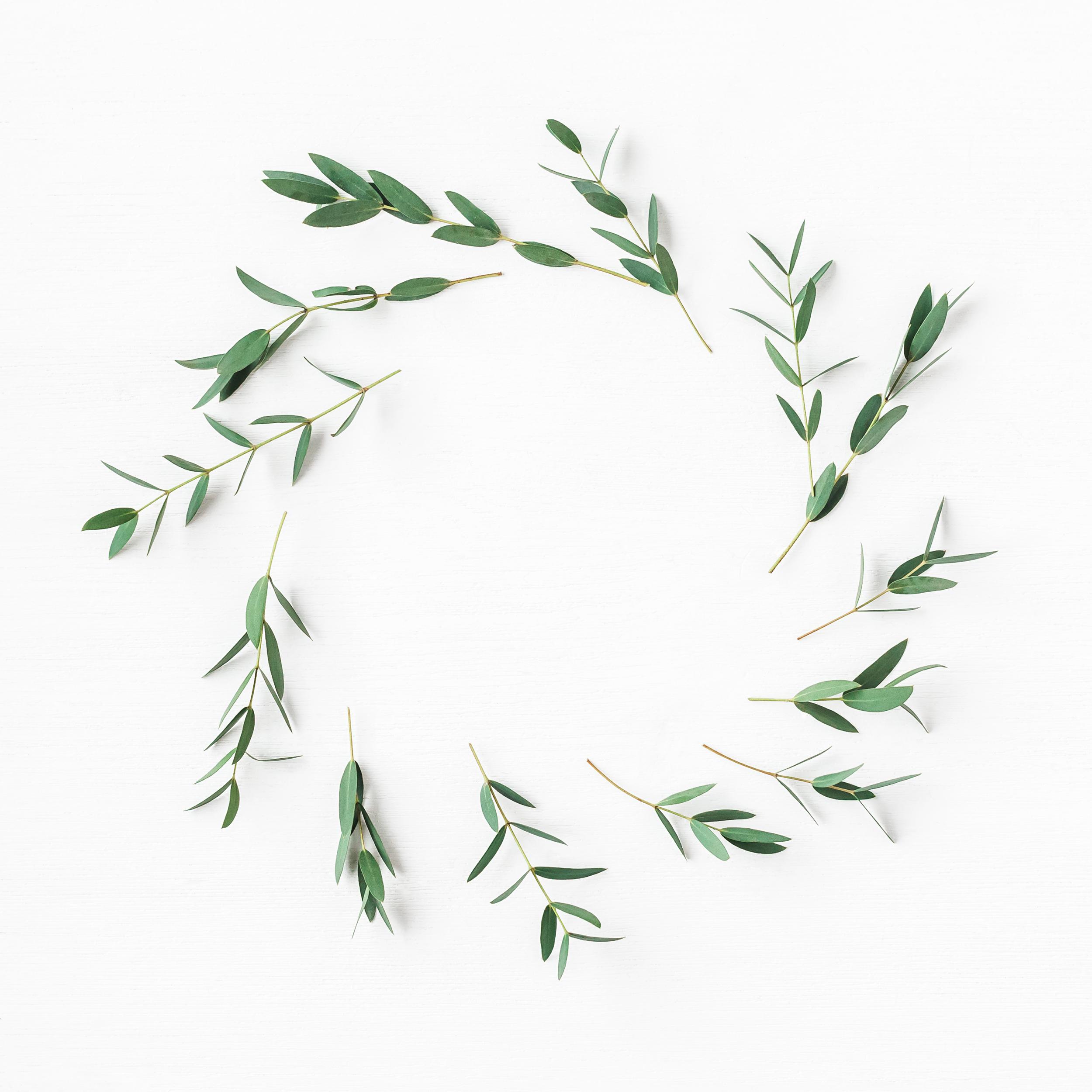 Wreaths & Brunch