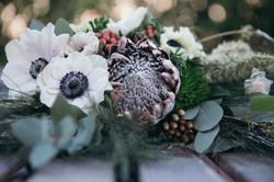 Anemone and Protea 2