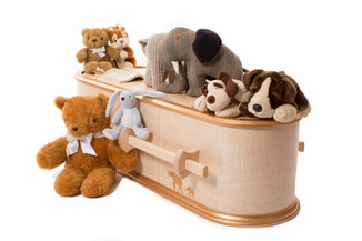 The Ark - Children's Coffin