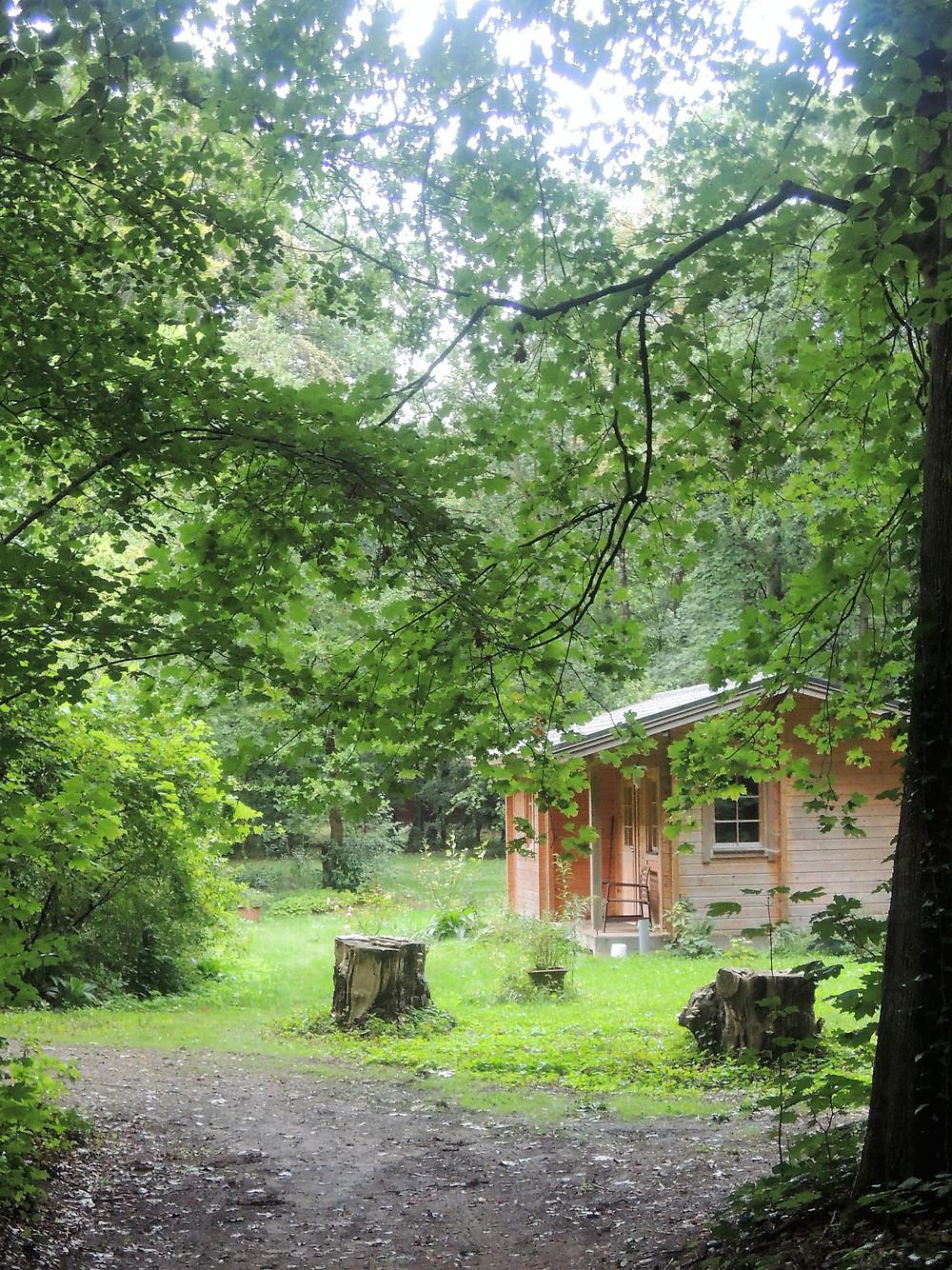 Blokhut in het bos naast meditatietuin