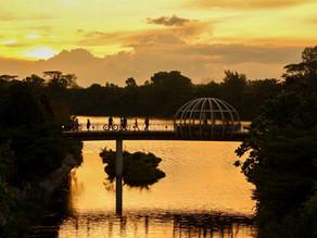 White Balance For Sunset Shots