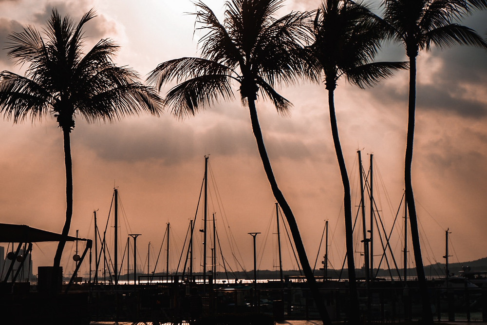 Raffles Marina at sunset.