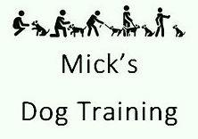 micks_dog_training_edited_edited.jpg