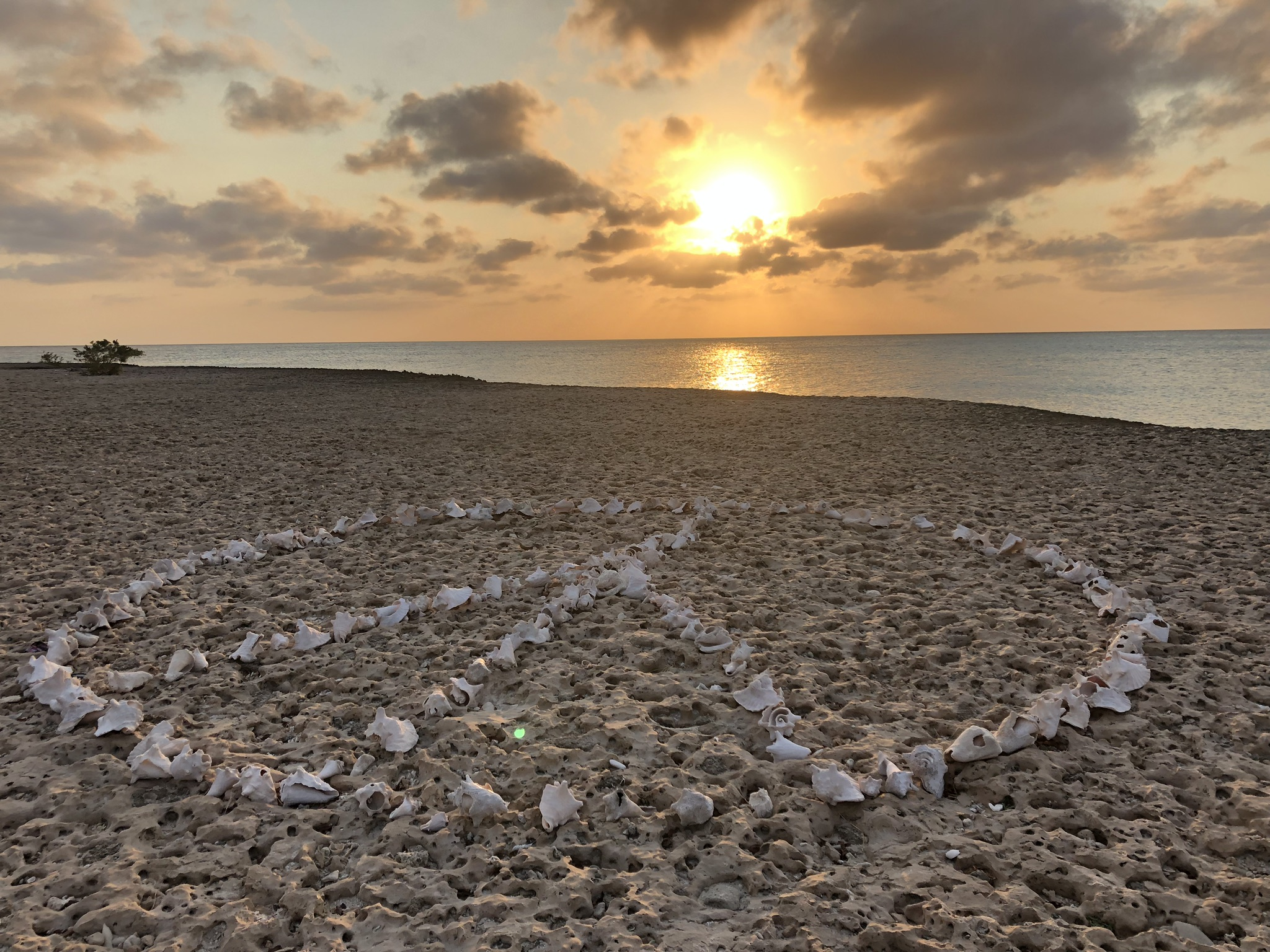 peace aruba