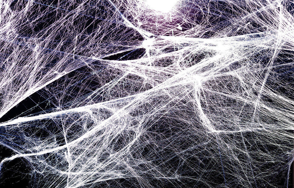 spider web texture background.jpg
