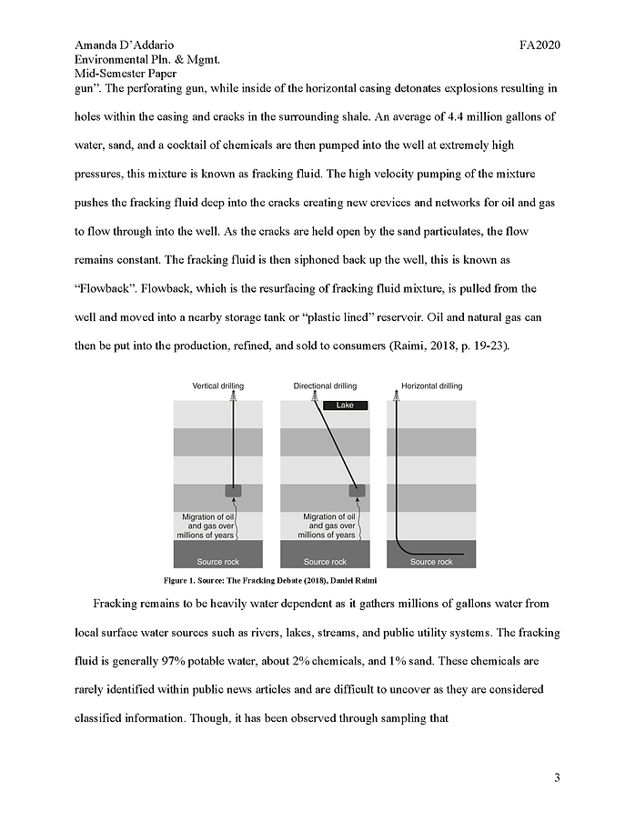 ENV PLAN MGMT PAPER 2_DADDARIO_Page_03.p