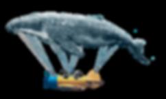 ballena voladora y chimpances.png