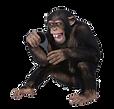 mono_recurso_fic2020.png