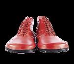 zapatos_recurso_fic2020.png