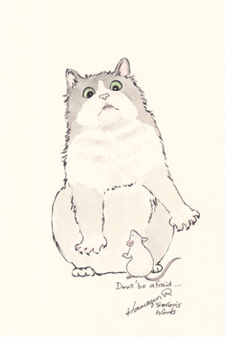 Suprized cat