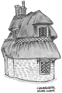 thatchedhouse01_s.png