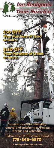 Joe Benignos Tree Service - Half Page Ve