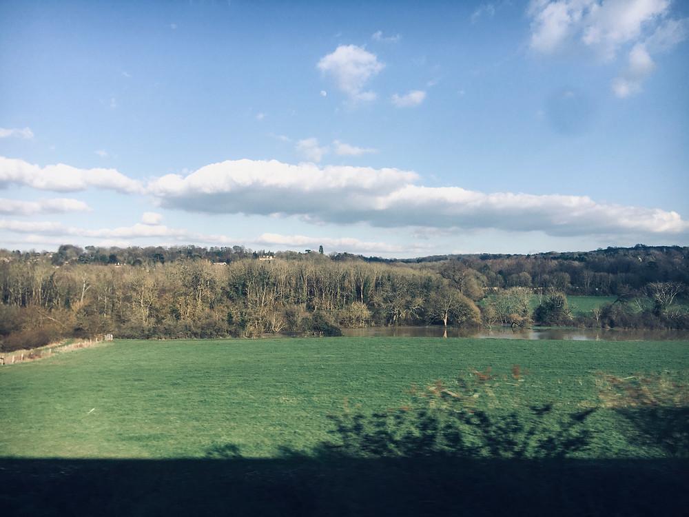 Dorking, Nature, Green, Landscape, Surrey