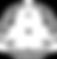 5th Element Jiu Jitsu - Logo (Inverted)-