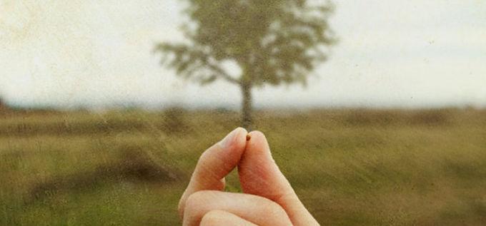 a tiny mustard seed