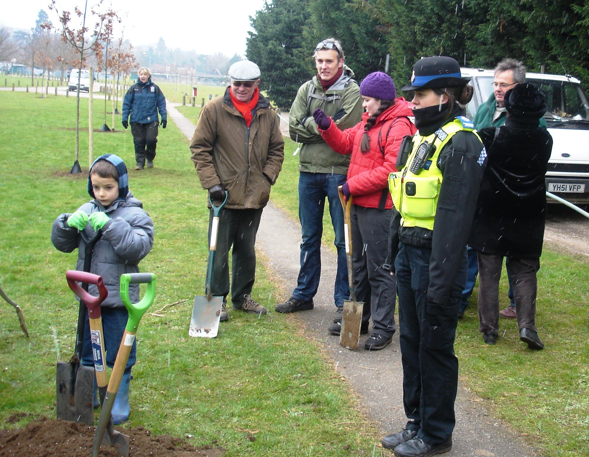 Oak tree planting