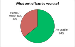 What sort of bag do you use?
