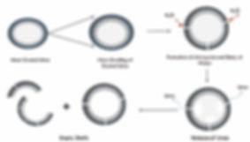 graph-Nitri-3.jpg