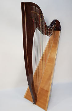 Albion lever harp hire