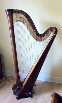 Salvi orchestra pedal harp for sale