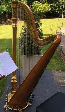 Morley pedal harp for sale
