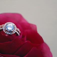 beautiful-bright-close-up-1232931.jpg