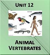 Unit 12.png