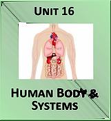 Unit 16.png