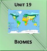 Unit 19.png