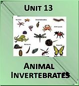 Unit 13.png