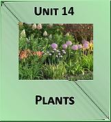 Unit 14.png
