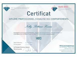 diplome-nelly_bittane_hanin-disc-14013.p