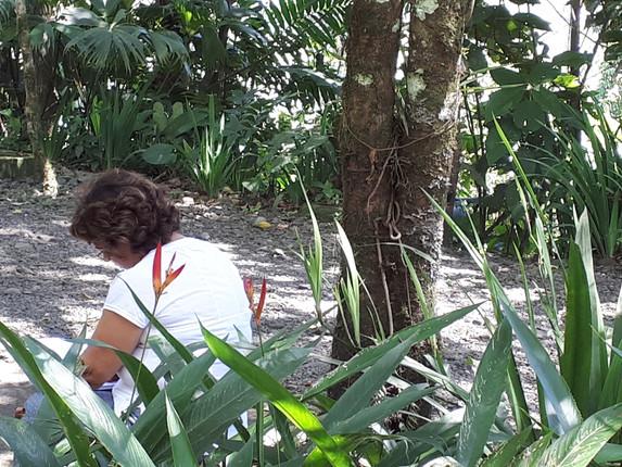מסע כתיבה לקוסטה ריקה