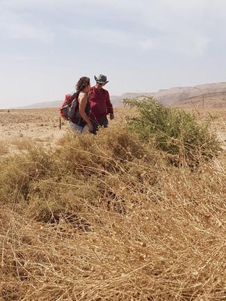 מסע כתיבה בעומק המדבר