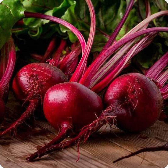 Beet Detroit Red Seeds