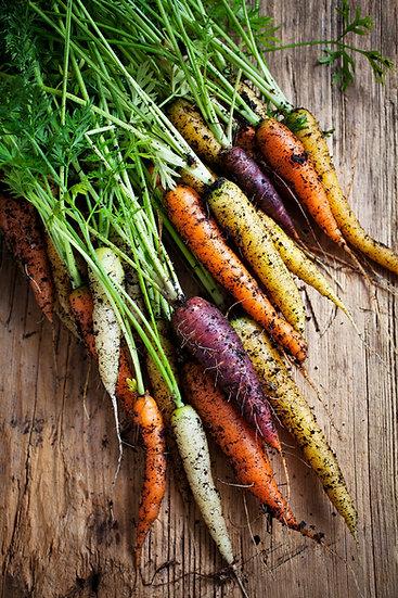 Carrot Scarlet Nantes Seeds