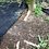 Thumbnail: 5 Extra-Large Weed Killer Mats for Trees