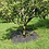 Thumbnail: 5 Large Weed Killer Mats for Plants & Trees