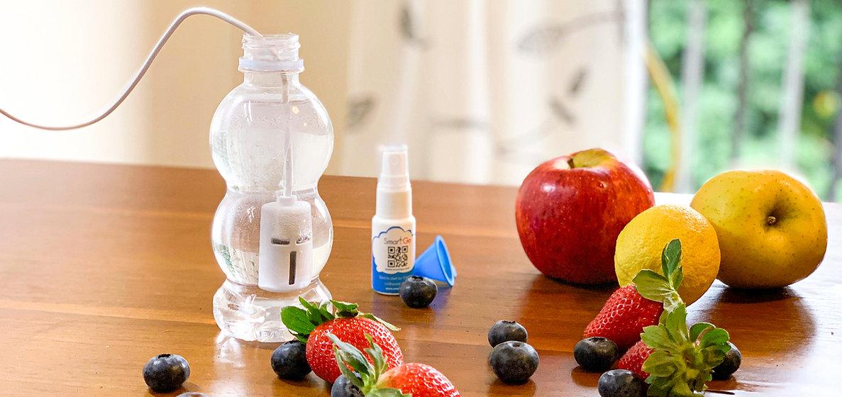 SmartGo DIY Portable Disinfectant Maker