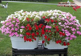 flower-planter-UMJA-customer.jpg
