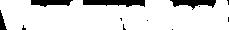 VB Logo White Transparent.png