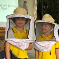 Learning Journey_Bees.JPG