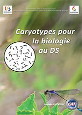 caryotypes.jpg